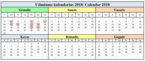 Užimtumo kalendorius